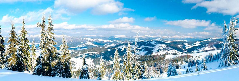 отдых в Карпатах зимой